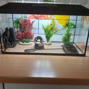 Aquarium 60x30x30
