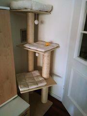 Katzenkratzbaum neu