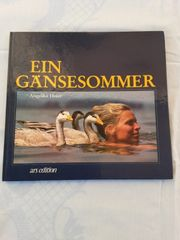 EIN GÄNSESOMMER von Angelika Hofer