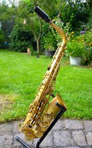 Alt-Saxophon Sequoia Modell Lemon
