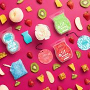 Scentsy Bars Duftwachs Wax Melts