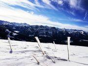 Geschenks - Gutscheine Schneeschuhtour