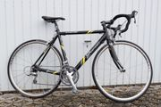 Rennrad 2danger Giro Comp T