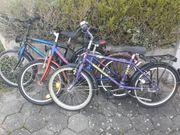 6 Verschiedene Kinderräder 20 24