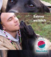 Sabina - ich kann mich gar