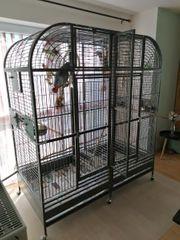 Papageienkäfig Montana Palace xxl cage