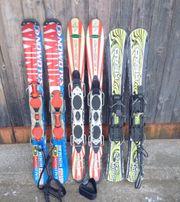 3 Paar Ski Figl Firngleiter
