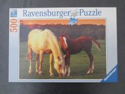 Ravensburger Puzzle - Pferde - komplett