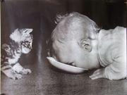 Kustdruck-Poster Kind und Katze