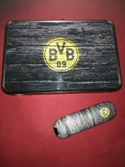 SKY Q Receiver mit BVB