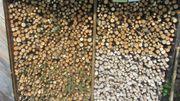 Kachelofen Holz