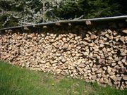 Brennholz 55Euro