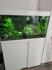 Aquarium Eheim vivaline LED 126