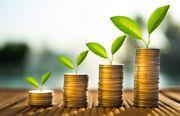Lösungen für die finanziellen Probleme
