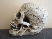 Totenkopf - Skull - Bonehead - Memento Mori - Deko