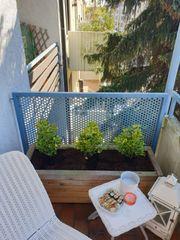 Möblierte 1-Zimmer-Wohnung mit Balkon in