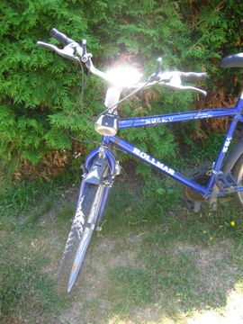 Bild 4 - Herrenfahrrad Jugendfahrrad Mountainbike 18 Gang - Birkenheide Feuerberg