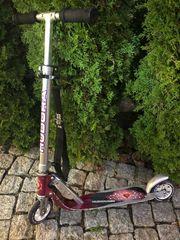 Cityroller Hundora Big Wheel RC