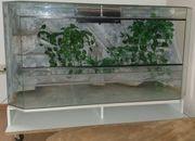 Panorama Glasterrarium
