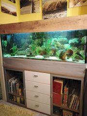Verkaufe schönen großen stabilen Aquarium