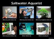 Meerwasser WhatsApp Gruppe