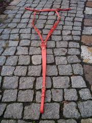 Schickes rotes Portugiesisches Vorderzeug Größe
