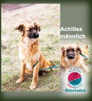 Achilles - Mein Name kommt aus