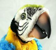 TOP FurReal Friends Papagei Ferbedienung