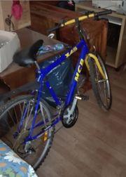 Fahrrad 28 Herrenrad MCB Helm