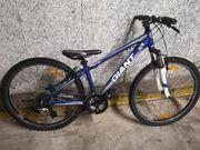 GIANT Fahrrad Mountainbike 26 Zoll