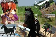 Reiterferien 18 -25 07 noch