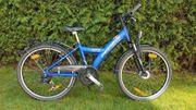 Mountainbike Pegasus 24 Zoll blau