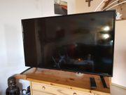 Fernseher Display defekt 49 JTC