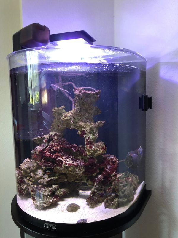 Meerwasseraquarium komplett mit LED Nanostream