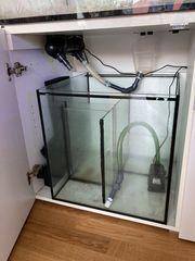 Meerwasser Aquarium mit Unterschrank ca