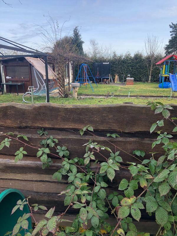 Garten Freizeitgrundstück