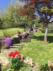 Tolles Gartengrundstück mit Aussicht