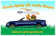 Coole Autos für coole Hasen