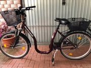 Fahrrad Tiefeinsteiger