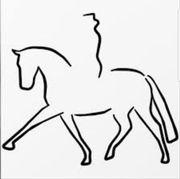 Pferdepfleger/in gesucht