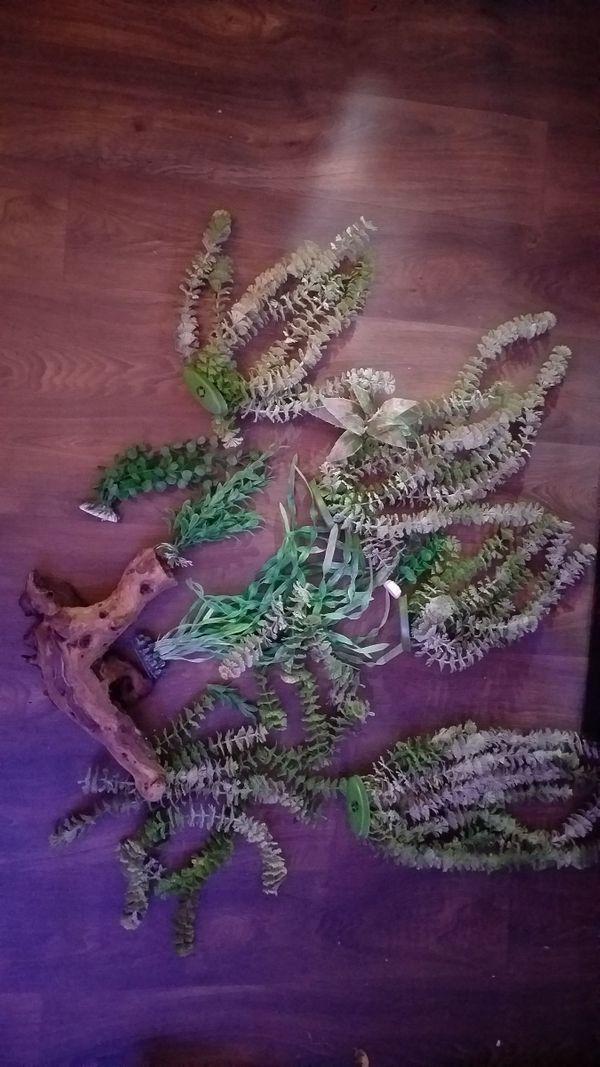 Künstliche Pflanzen und 1 Wurzel