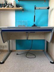 Moll Schreibtisch In Stuttgart Haushalt Möbel Gebraucht Und