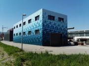 Neubau - Halle mit Büro in