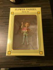 Flower Fairies Serie