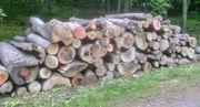 Buche Stammholz Brennholz