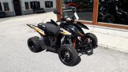 Quad ATV Access XTreme 300