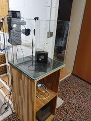 Meerwasseraquarium Becken Technik