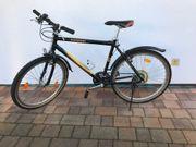 Cycle Wolf Fahrrad