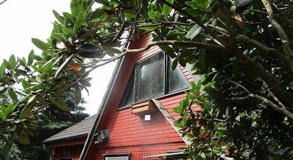 Nurdachhaus zu verkaufen oder tauschen