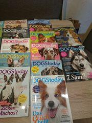 Hunde Magazin